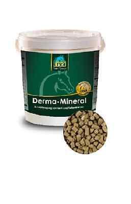 Lexa Derma Mineral 25kg Sack 4,35€/kg Mineralfutter für ihr Pferd / Haut & Fell