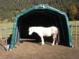 Weidezelt Unterstand Zelt Lagerzelt Lagerunterstand Weidehütte 3,6x9,6x2,7 grün